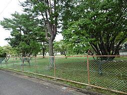 目の前公園です