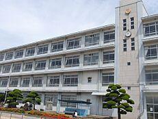 小学校姫路市立 妻鹿小学校まで461m