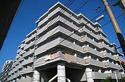 メゾンドシャトラン[5階]の外観