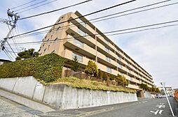 4LDK 駅 歩6分 宅配ボックスのある ルピナス生田