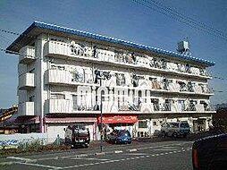 コーポ名和[4階]の外観