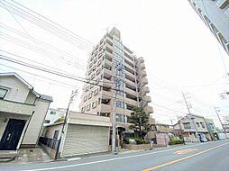 ライオンズマンション戸田公園第3 学区/戸田第二小・喜沢中