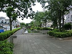 見沼代親水公園(20m)