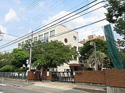 東海小学校 国際理解を深めるふれあい集会や地域訪問といった地域と連携した活動を行っています。6年生は卒業前に茶会を行います。 徒歩 約9分(約700m)