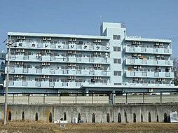 愛知カレッジタウンA棟[1109号室]の外観