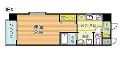 Ciel NAKABARU(シエル中原)[3階]の間取り