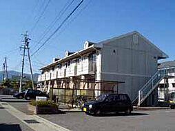 アネーロ和田