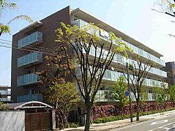 甲子園六石町ハイツ[420号室]の外観