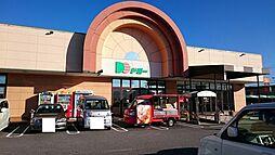 ドミー幸田店
