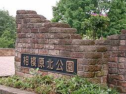 相模原北公園(...
