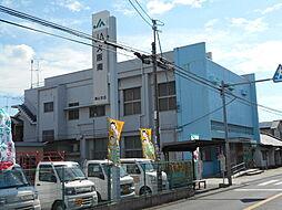 JA南黒山支店