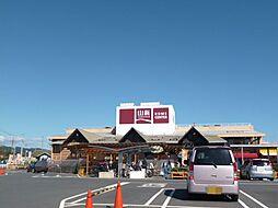 山新多賀店(1...