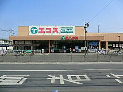 エコス霞ケ関店...