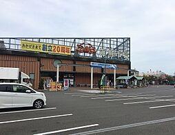 舞鶴港 とれと...