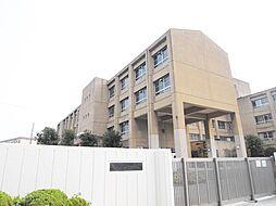 松原第七中学校