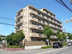 全15戸のマンションです。南向きで日当り良好。