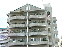 京都府京都市伏見区横大路下三栖山殿の賃貸マンションの外観