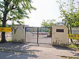 柳崎小学校