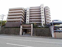 アルファステイツ朝霧ヒルズ 1階部分
