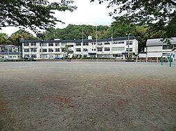 美山小学校 約...
