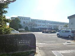 富木島小学校 ...