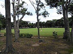 梅園公園 40...