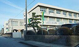 掛川市立横須賀...