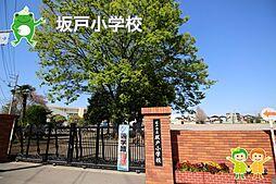 坂戸小学校(1...