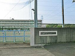 金井中学校