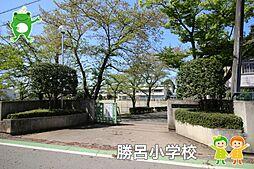 勝呂小学校(1...