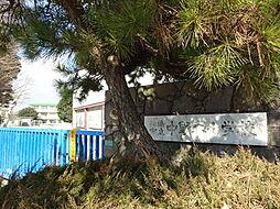 船橋市立中野木...