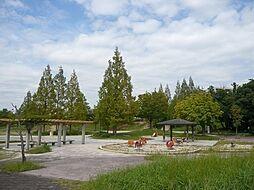 株山中央公園