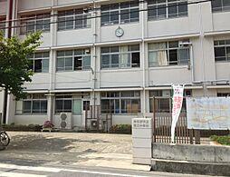 中学校泉佐野市...