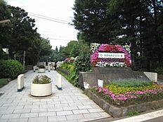 世田谷公園(380m)