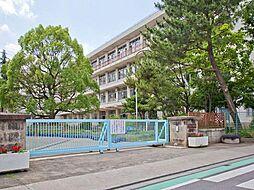 所沢市立泉小学...