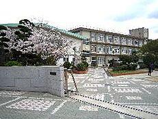 中学校姫路市立灘中学校まで2895m