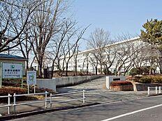 多摩市立永山小学校 距離560m