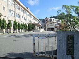 野洲中学校