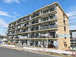 滋賀県湖南市岩根の賃貸マンションの外観