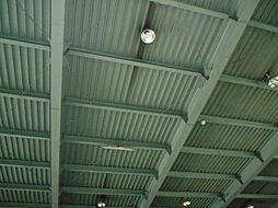 1Fの天井です