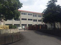 桐原東小学校