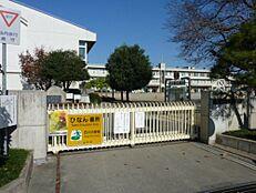 小学校水戸市立渡里小学校まで1020m