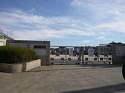伊敷台中学校