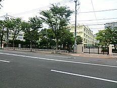 江東区立越中島小学校(約850m11分)
