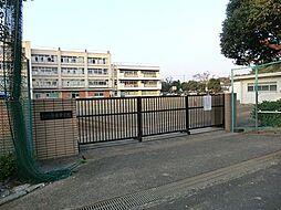 周辺環境:中学...