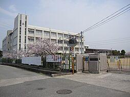 大津茂小学校