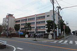 鷺沼小学校(約...