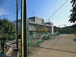 中学校緑が丘中...