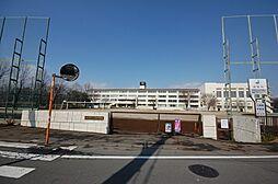 いるま野中学校...