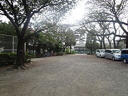 柴崎公園まで約...